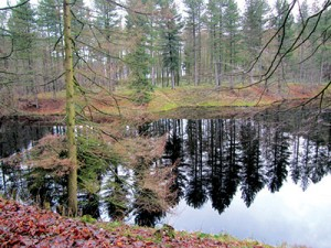 BS-Walk-Ladybower-1-Mar13